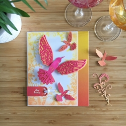 orange_hummingbird1