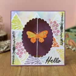 butterfly_hello